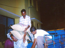 UNLOADING RICE BAGS